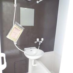 浴室 室内の1面はジュエリーブラウン色を採用しています。