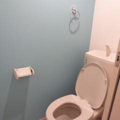 トイレ内アクセントクロス(別途工事料が発生します。)