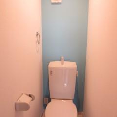 トイレ内アクセントクロス2(別途工事料が発生します。)
