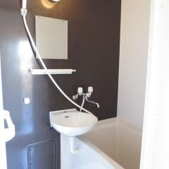 浴室 アクセント壁はジュエリーブラウンを使用しています。