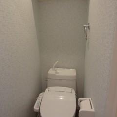 トイレ (収納棚・アクセントクロスは別途工事代金が発生します。)