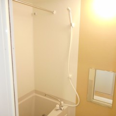 浴室。アクセント色(標準)は茶色を使用しています。